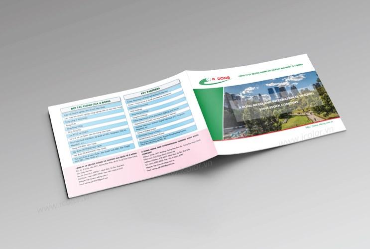 Thiết kế profile | hồ sơ năng lực Công ty Á Đông