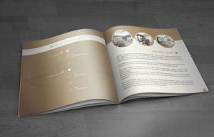 Thiết kế Profile   hồ sơ năng lực Royal Datci