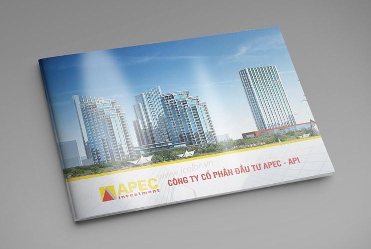 Thiết kế profile | HSNL CTCP Đầu tư Châu Á Thái Bình Dương APEC - API