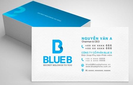 Thiết kế bộ nhận diện thương hiệu BlueB