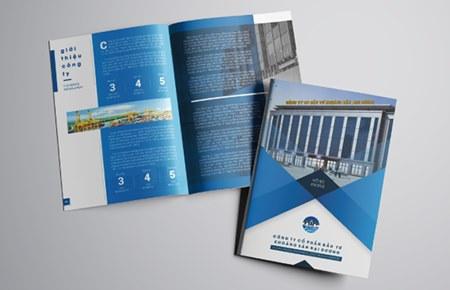 Thiết kế profile | hồ sơ năng lực CTCP Đầu tư Khoáng sản Đại Dương