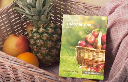 Thiết kế catalogue Thảo Phương