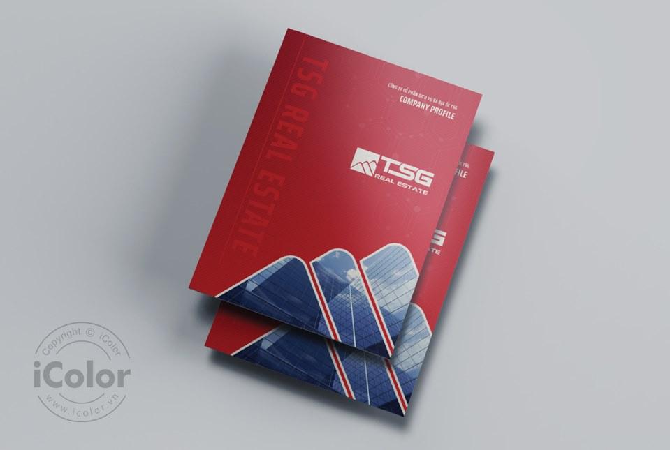 Thiết kế profile | hồ sơ năng lực Công ty CP DV & Địa ốc TSG