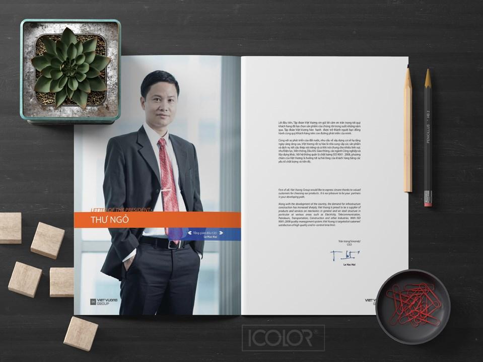 Profile   hồ sơ năng lực Công ty Việt Vương