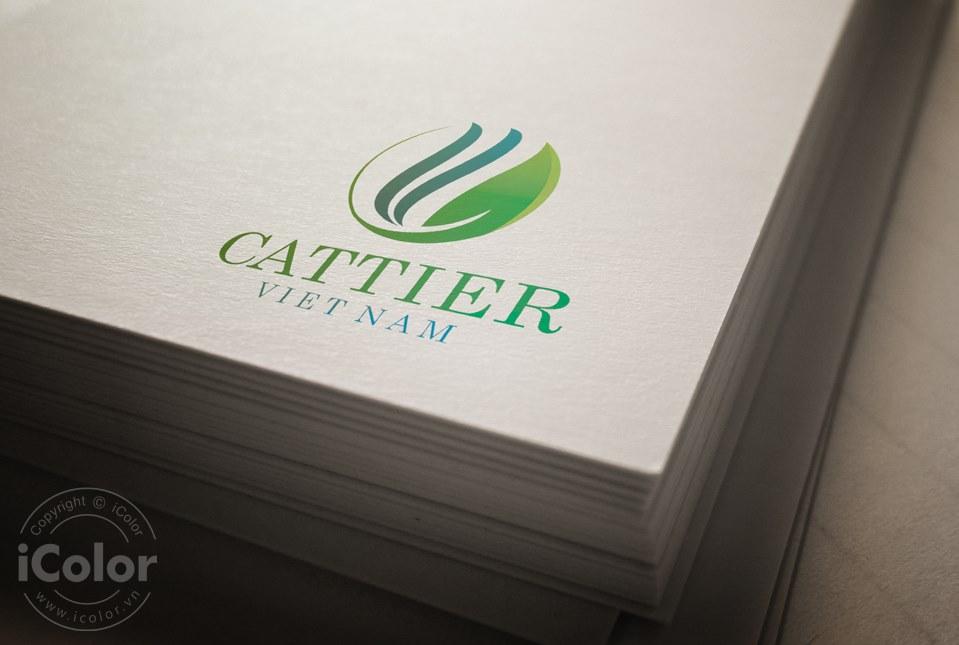 Thiết kế logo Công ty Cattier Việt Nam