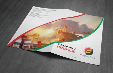 Thiết kế profile công ty TM và DV FESVN