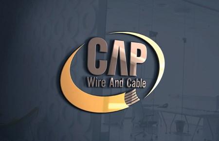 Thiết kế logo CTCP Dây và Cáp điện Chung Anh Phát
