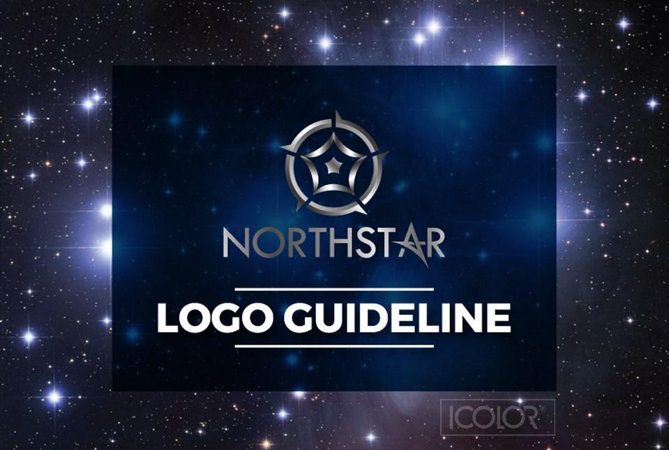 Thiết kế logo công ty cổ phần NORTHSTAR 2021