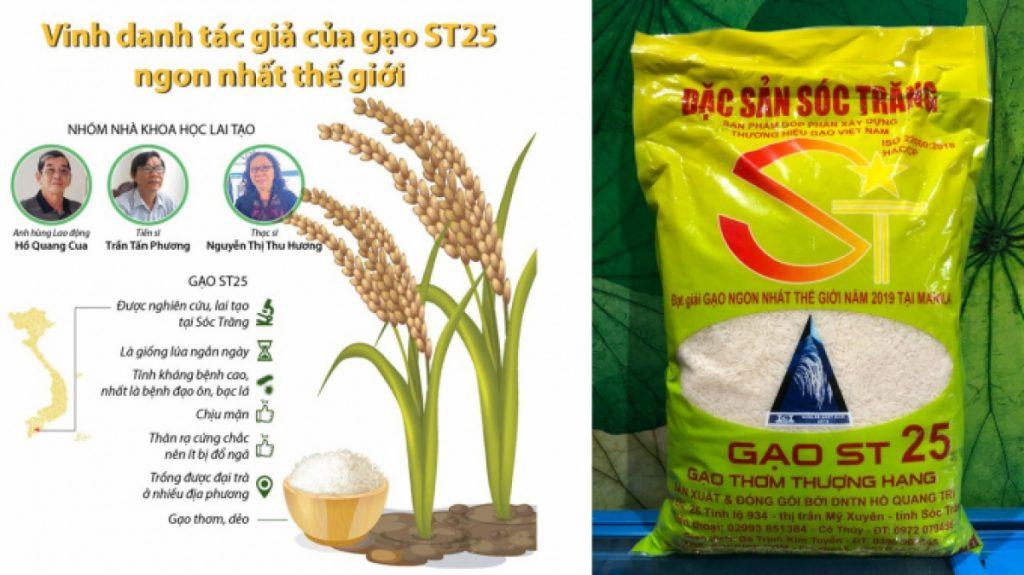 Để phân biệt gạo ST25 thật do Doanh nghiệp tư nhân Hồ Quang Trí sản xuất và các loại gạo ST25 trôi nổi trên thị trường, người tiêu dùng có thể căn cứ vào bao bì, nhận diện thương hiệu, cách đóng gói và chất lượng gạo khi nấu lên.