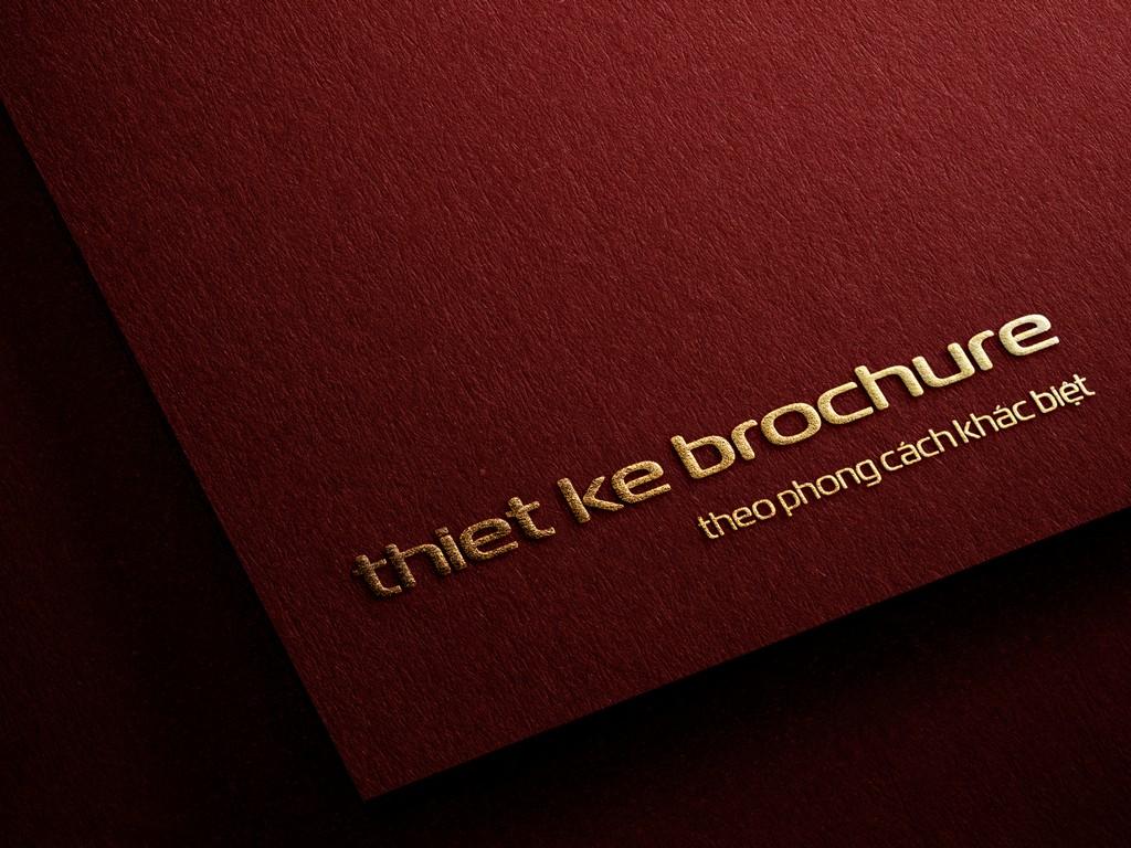 Thiết kế brochure theo phong cách khác biệt
