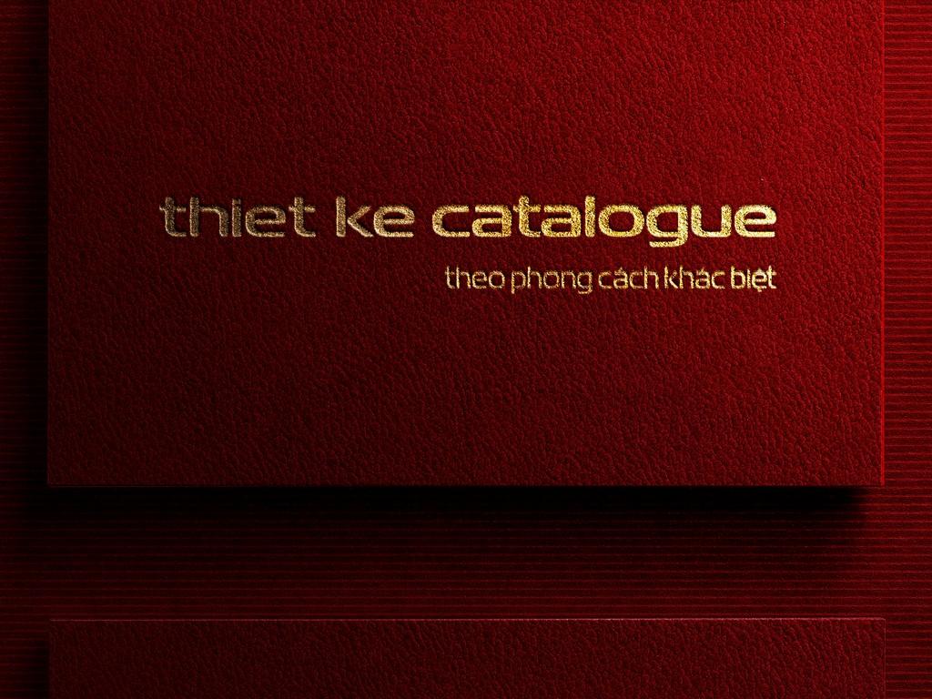 Thiết kế cataloguetheo phong cách khác biệt