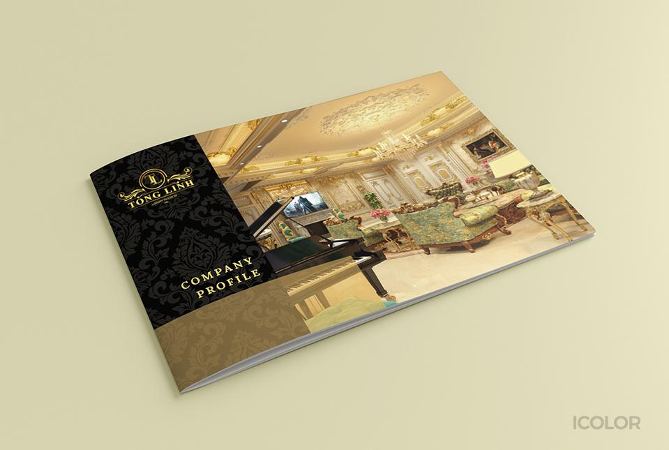 Thiết kế profile CT TNHH Thương mại và Nội thất Tống Minh
