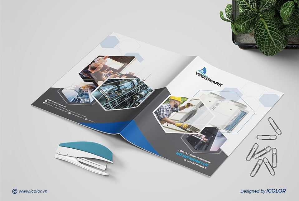 Thiết kế HSNL Công ty TNHH Vinashark